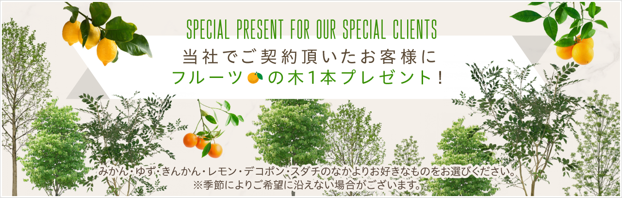 当社でご契約頂いたお客様にフルーツの木1本プレゼント!